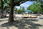新佃公園の画像
