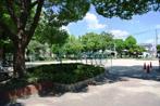 下稲葉公園の画像