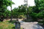 宮内公園の画像