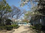 瑞光寺公園の画像