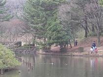 こども自然公園 02