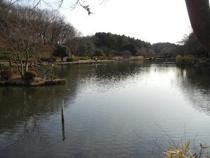こども自然公園 03