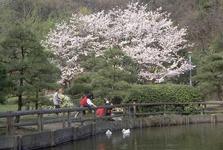 久良岐公園02