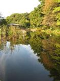 久良岐公園03